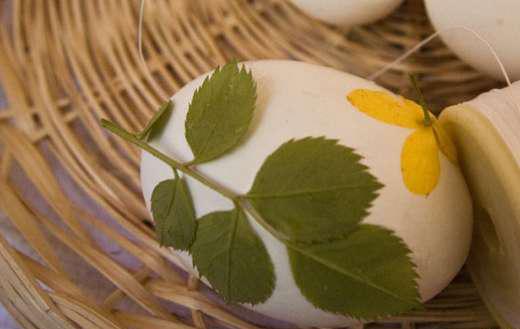 带优雅印花的水煮蛋你舍得吃吗2