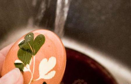 带优雅印花的水煮蛋你舍得吃吗7