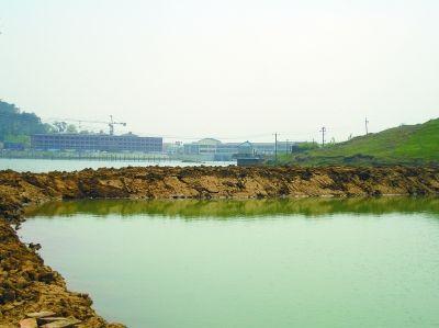 金牛湖几十亩水面被违法侵占成鱼塘 至今无人管
