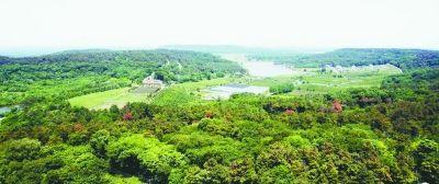 天然氧吧――平山省级森林公园。