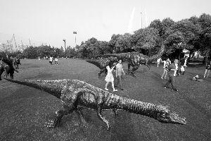 """中华恐龙园中,游客和""""恐龙""""和平相处   本版摄影 现代快报记者 路军"""