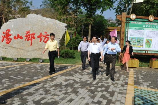 会议代表参观考察南京市汤山街道孟墓社区郄坊村