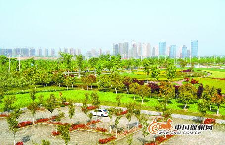 大龙湖景观
