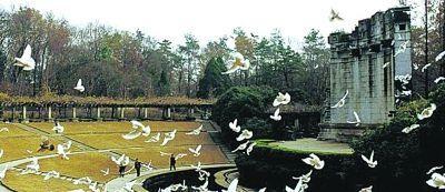中山陵景区景点音乐台。资料图片