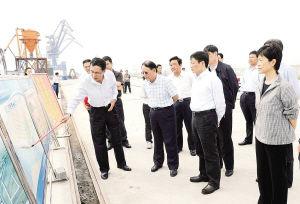 领导视察新民洲港口产业园