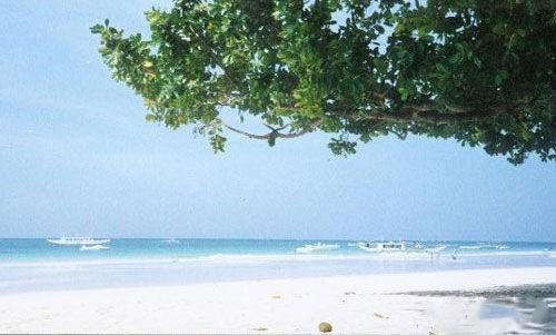 菲律宾的博龙岸海滩(资料图)