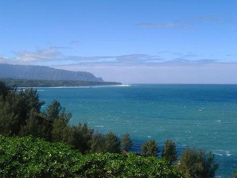 夏威夷海滩(资料图)