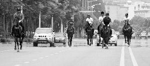 骑手骑着骏马驰骋在仙林大马路上