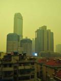 """南京变身""""黄色之城"""""""