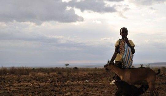"""组图:肯尼亚马赛人""""野蛮部落""""一夫多妻制"""