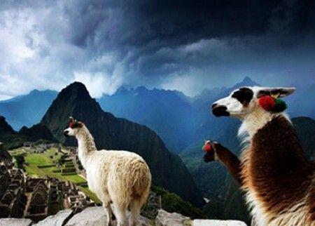 秘鲁的马丘比丘