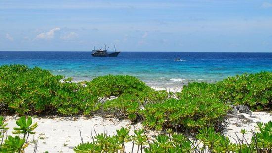 带你看中国最美的海岛西沙群岛(组图)