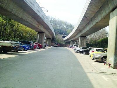 红山动物园地铁站停车场被砸盗案发现场