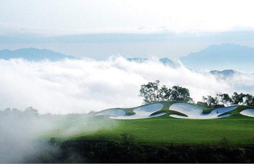《云中漫步》与美国加州的纳帕山谷