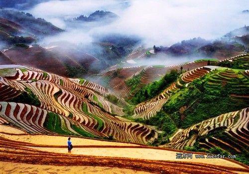 诗意紫鹊界,绵延二千年的秦人梯田