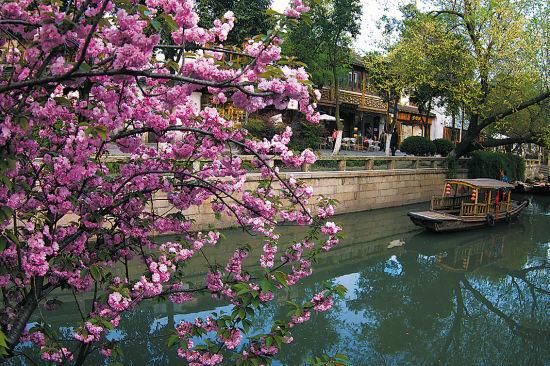 桨声船影的姑苏城,那些坚守着传统的老铺子,或就隐匿在古城的街头巷尾
