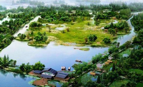 泰州溱湖湿地