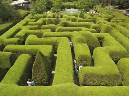 最有名的传统树篱迷宫