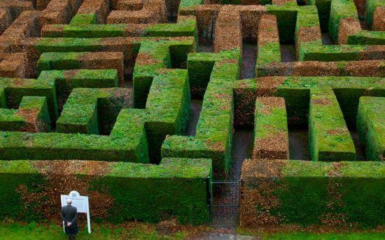 苏格兰Innerleithen市的Traquair迷宫