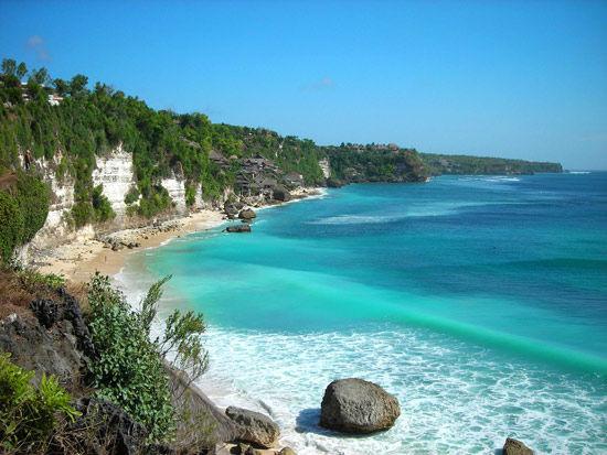 印度尼西亚巴厘岛珊瑚礁
