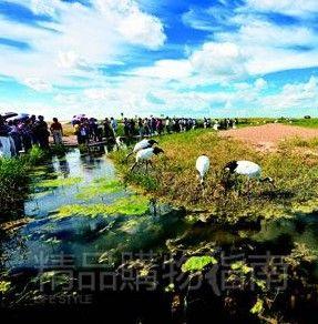 扎龙丹顶鹤保护区