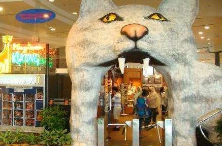 马来西亚古晋的猫博物馆