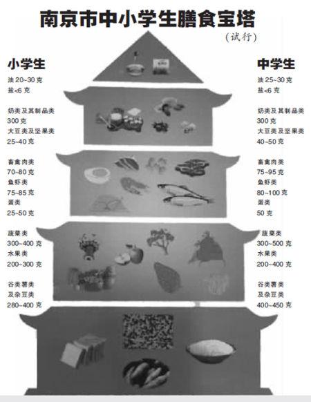 营养午餐试行标准》及《南京市中小学生膳食宝塔》