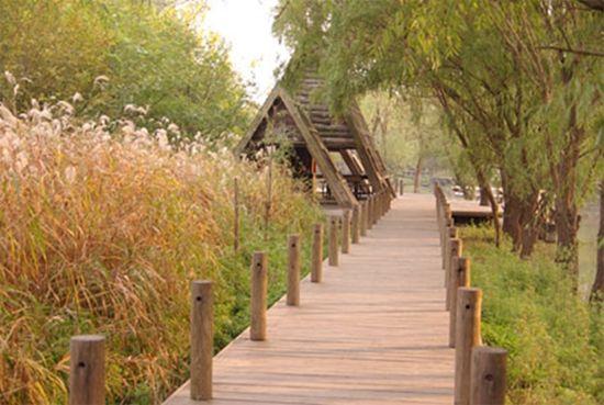 春天的早晨明亮而欢快,一大早起床出发到凤凰岛生态景区去春游,湿地景观、游乐设施、马场骑行、农家采摘,最后来一场自助烧烤(原料可自备,烤炉可租用)。扬州凤凰岛生态旅游区南连长江,北接邵伯湖,境内江河湖相连,水道纵横。旅游区内的休闲性项目有凤凰阁、凤凰台 ( 喝花坊 ) 、瓷韵山庄、水岸咖啡吧、乡村烧烤、露营地等;参与性项目有:越野车、跑马场、丛林飞鼠、激光战船、动力伞和有游轮、画舫、快艇、摩托艇等组成的水上俱乐部。   凤凰岛的活动结束后,团队返回市区。因为队中有同学对扬州的毛绒玩具感兴趣,所以要抓住最