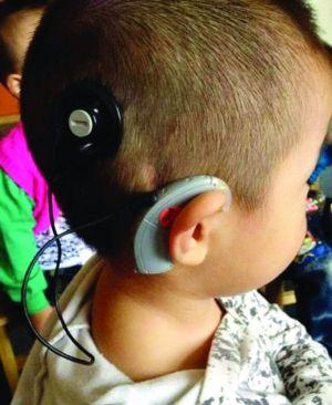 南京全城搜寻:帮浩浩找小耳朵