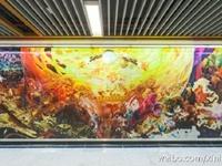 南京地铁3号线明开通 202个区间票价下降1元