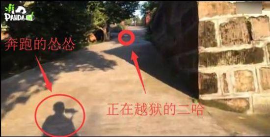 熊猫直播揭秘射洪动物园【广告】