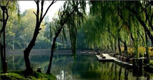 泰州名胜古迹之泰山公园